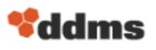 de maximis Data Management Solutions, Inc