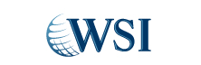 WSI Paid Search