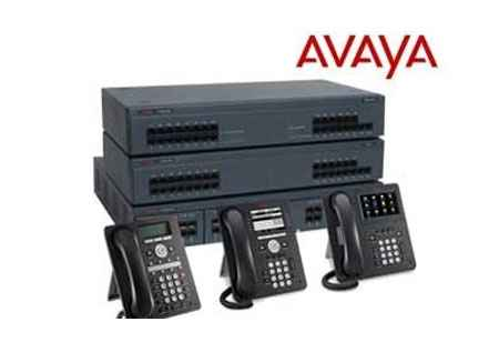 Voice-enabled Customer Services with Avaya