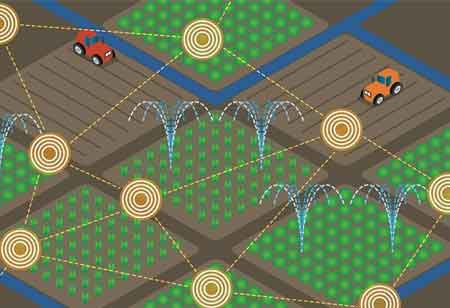 Four Ways on how IoT Applications are Transforming the Agriculture Industry