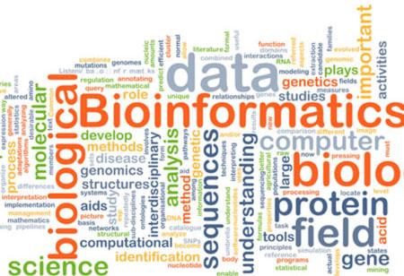 Bioinformatics: Forging Ahead to New Heights