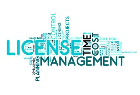 What makes Cloud-Based License Management CIO-Friendly?