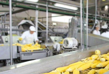 Integrated Features to Enhance Accounting in Food Manufacturing Industry