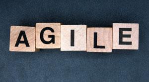 How to Develop Agile Enterprise Framework