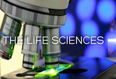 Key Regulatory Trends in Life Sciences