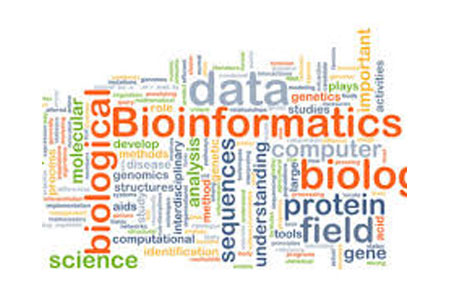 Bioinformatics: Newer Opportunities in Genomic Testing