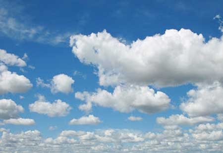 Cloud Stock Investment: A Quick Guide
